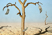 moneytree dying